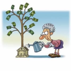 Денежное дерево - полив
